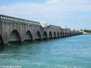 Bridge to the Florida Keys